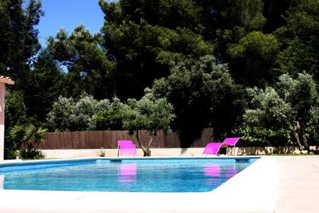 Lovely T3 among olive trees - Apartamento
