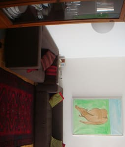 Large, charming and very comfortable 3 bedroom apt in Geneva city center, just by the river Rhone.  Extremely CONVENIENT LOCATION. Only 8-minute tram ride to the United Nations, and 5-minute walking distance to the Cathedral.