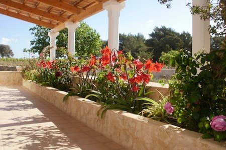 Casa de campo tradicional - Formentera - House