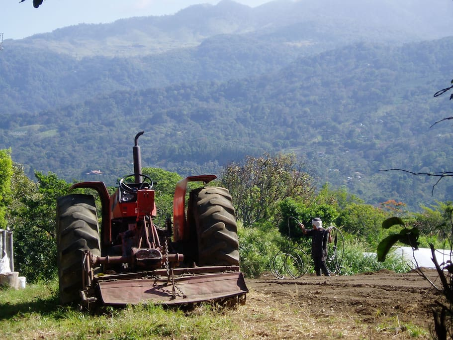 Boquete is the agricultural breadbasket of Panama