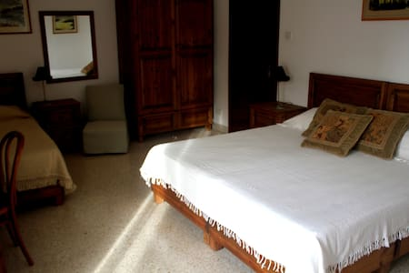 Artemisia Bedroom - Bed & Breakfast