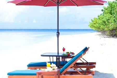 Beach House Ukulhas Breeze Inn - Ukulhas - Bed & Breakfast