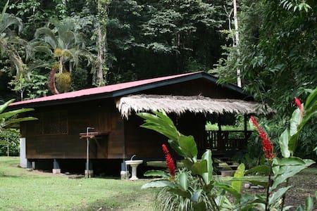 Casitas de Punta Uva - Casa Ginger