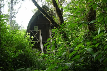 Room type: Entire home/apt Bed type: Futon Property type: Treehouse Accommodates: 2 Bedrooms: 1 Bathrooms: 1