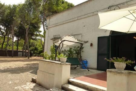 Delightful Villa in Selva di Fasano - Fasano - Villa
