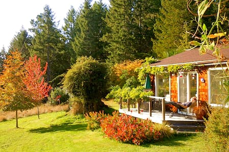 Quiet Meadow Cottage near Mendocino & ocean shores - Cabin