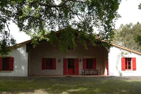 Belle ferme landaise renovée - Saint-Michel-de-Castelnau - House