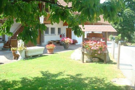 Ferienwohnungen Wangenried  - Apartemen