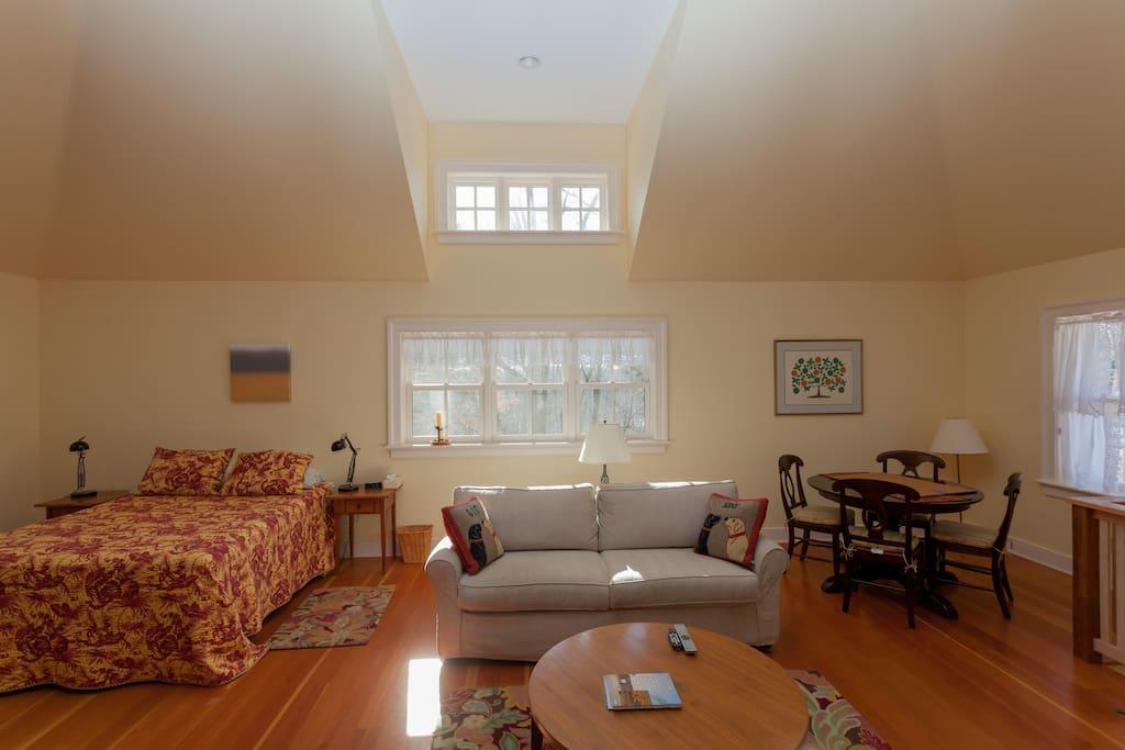 Bedroom Area/Living area/Dining Area