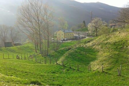 Agriturismo VillaSalto CountryLife - Andere