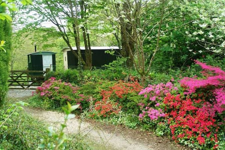 The retreat at Berry Lane Cottage - Bed & Breakfast