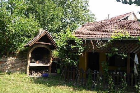 Eco Camp at National Park - Novi Sad