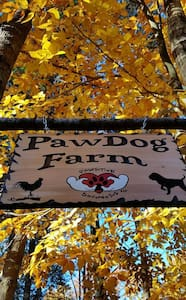 TENTING - PawDog Farm and Retreat - TENTING - Lyman