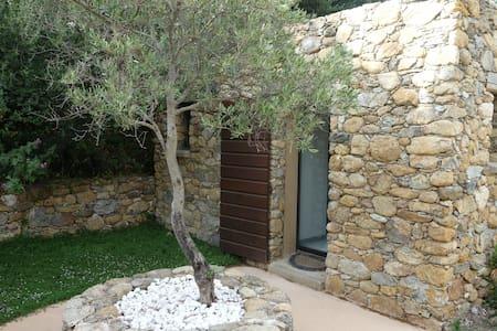 Chambre privée avec SDB, jardin et accès piscine. - Patrimonio