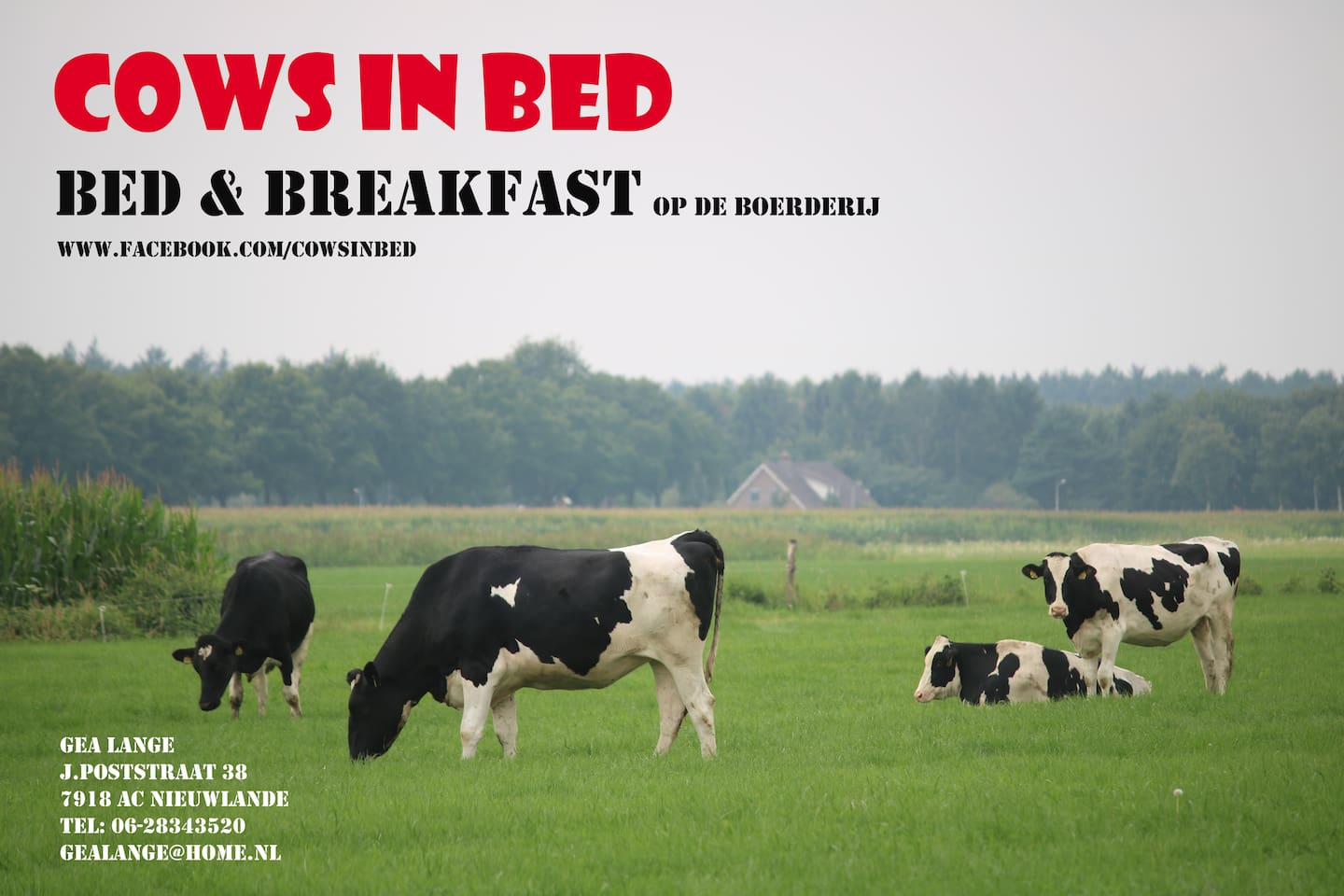 Top 20 bed en breakfasts slagharen: herbergen en b&bs   airbnb ...