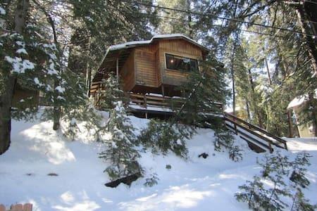 Running Springs Cabin near Big Bear - Cabane