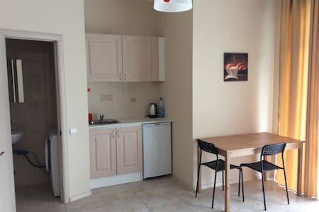 Уютная квартира-студия. - Appartamento