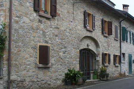 Villa Rosa - Vezzano sul Crostolo - Huoneisto