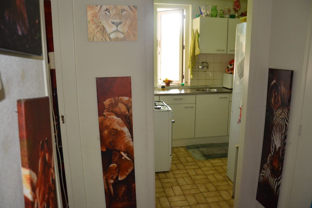 Facing my kitchen. Small, compact but with nice cooking area, microwave, oven and cooker, refrigerator