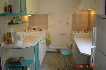 3xbed flat / wireless+parking 公寓 - Ljubljana - Apartment