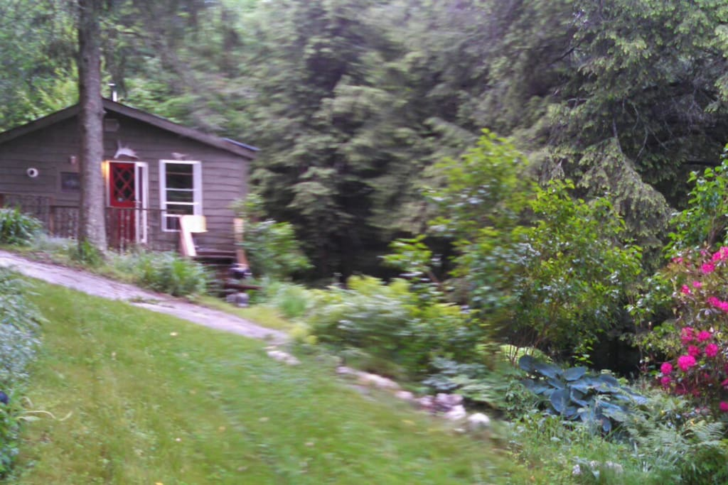 Mountainside Cabin South Royalton
