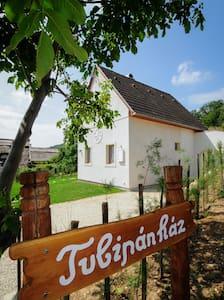 Balatonudvari, szőlőhegy - Balatonudvari - Casa