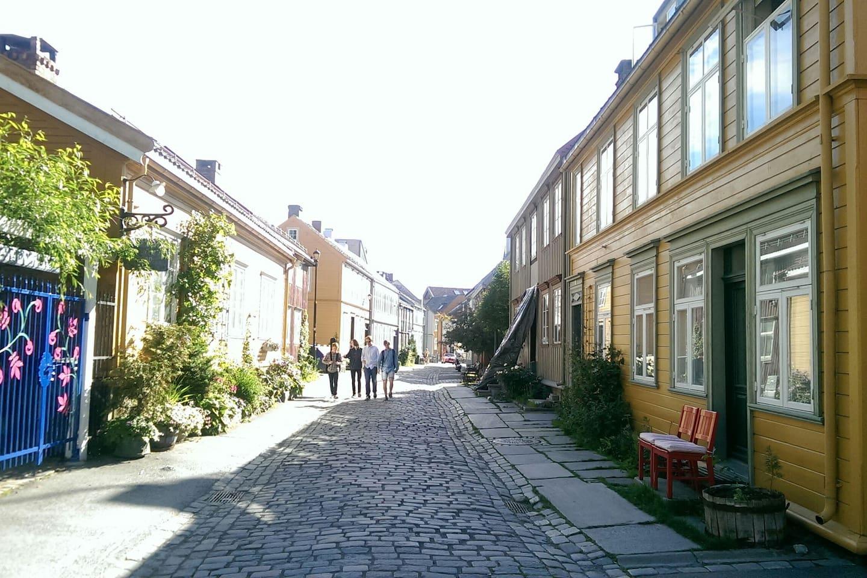 Bright flat in charming Bakklandet