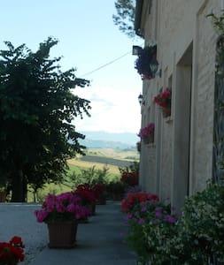 """""""All'ombra degli Ulivi"""" B&B - San Marcello - Bed & Breakfast"""