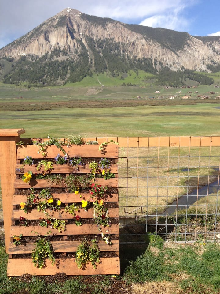 Beautiful views from fenced in yard and deck.