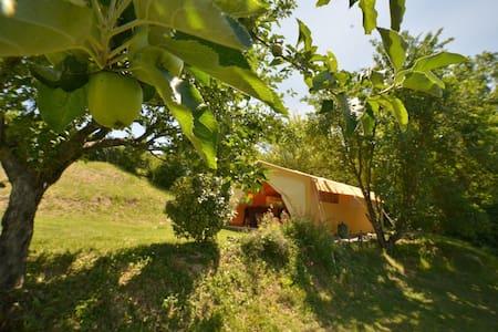 Safari Tent - Gaillac-Toulza - Tenda