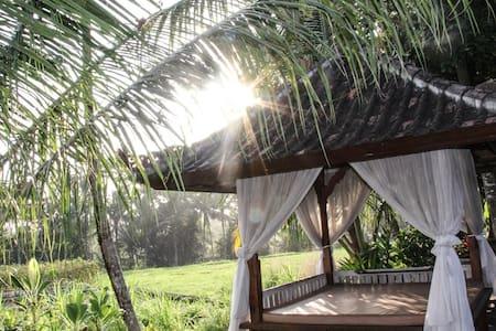 Balinese Rice Terrace Bungalow