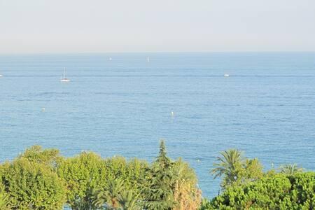 10 min of Monte Carlo/MENTON/SEE - Menton - Apartment