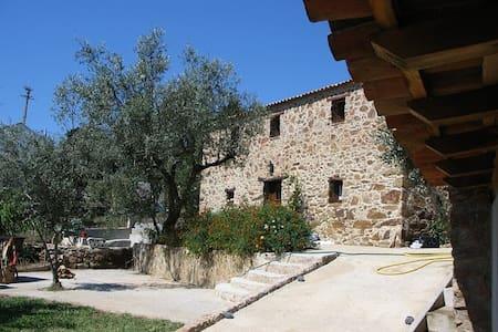 Casa das Oliveiras country house - Maçãs de Dona Maria - Casa