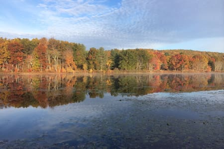 Peaceful & Private Lakefront Apartment - Rhinebeck - Apartamento