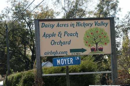 Daisy Acres in Hickory Valley - Sparta