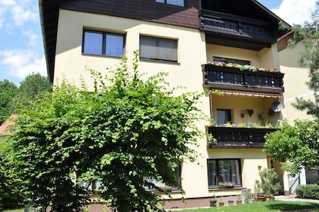 Apartment in Bad Ischl, top located - Apartment