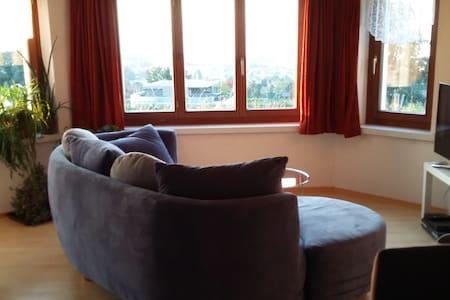 Gemütliche Wohnung mit Blick über den Bodensee. - Condominium