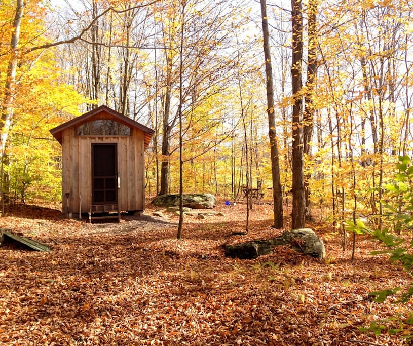 AIRBNB cabin, late autumn.