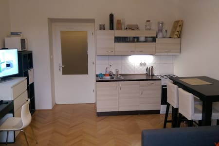 Small cozy apartment near the city center - Flat