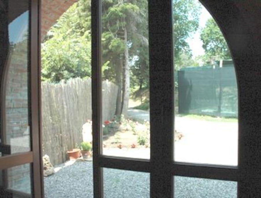 vista di porzione del giardino