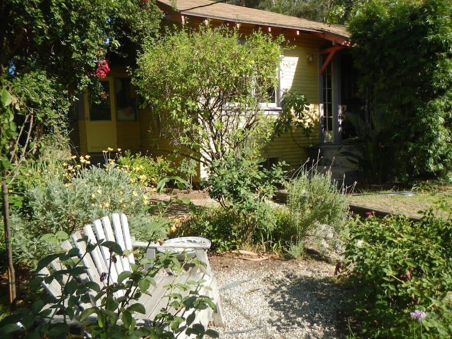 Cottage, from rose garden