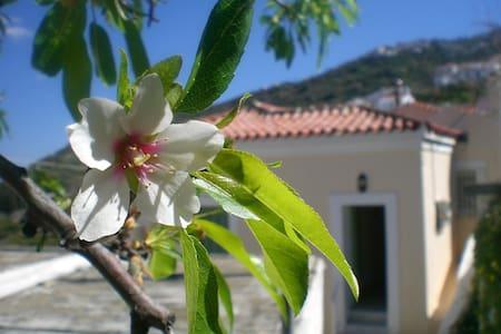Villa in Livadia, Andros, Greece - Livadia - Vila