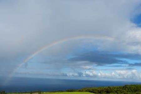 ハワイ島の隠れ家的 癒しの宿 - Papaaloa - Andet