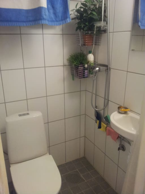 Small, but functional bathroom