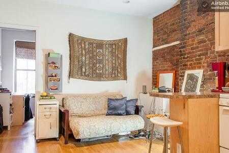 Downtown New York LES 2 bedroom apt