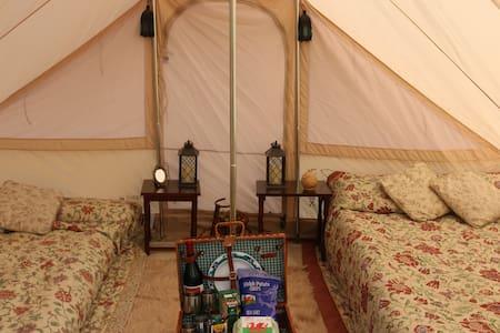 Ganol Snowdonia - Tent
