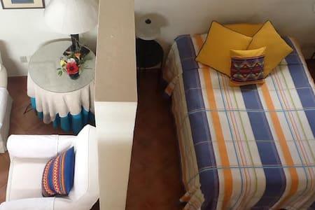 CASA COLIBRI - San Miguel de Allende - Appartement