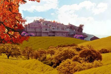 Awesome, PRIVATE LUXE Villa in San Francisco Bay! - Alamo - Villa