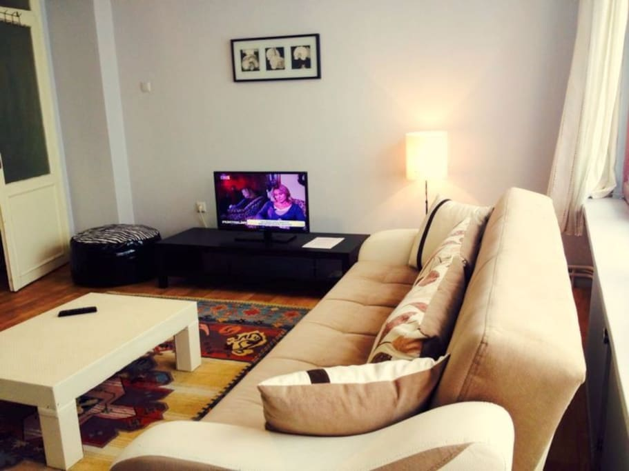 """living room(sofa bed-open and 32"""" led tv)"""