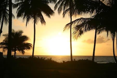 TROPICAL BEACH HOME, on 3200 acres! - Punta Santiago